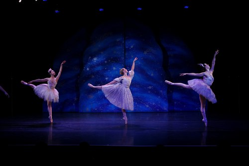 NYTB's Cinderella and the Fairies