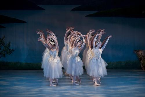 Swan Swan Act II - Waltz.