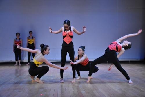 Loco-Motion Dance Theatre for Children's 'Standards.'