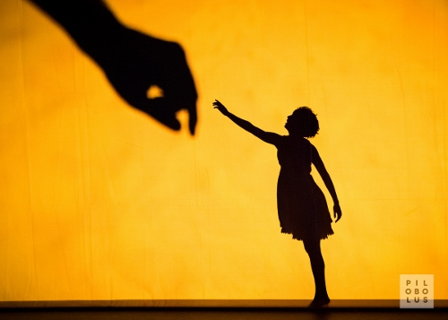 """Pilobolus opens ADF in Cleveland on Saturday, July 29 in """"Shadowland."""""""