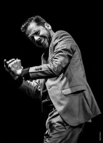 Flamenco Vivo Carlota Santana<br>Pictured: José Maldonado