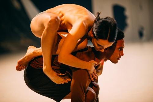 Marne van Opstal and Imre van Opstal's 'Take Root'.