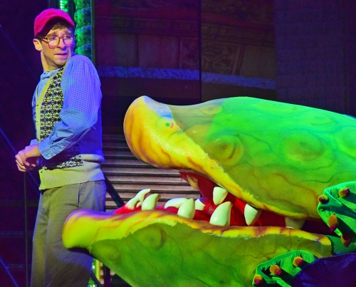 Audrey II starts to talk and startles Seymour (Joey Boos) in Beef & Boards Dinner Theatre's production of Little Shop of Horrors, now on stage through Nov. 17.