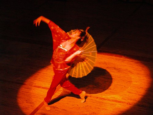 New York City Ballet's Dance with the Dancers 2007