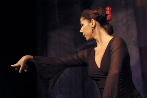Spanish dancer Sonia Poveda performs traditional Flamenco