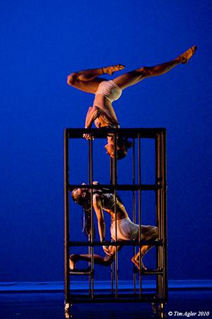 'The Cage' by Motion Tribe/Marie de la Palme